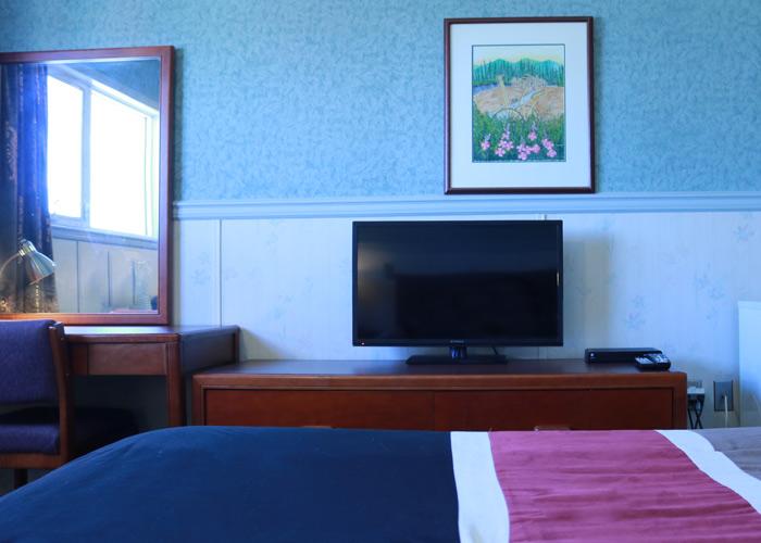 single room elite hotel yukon